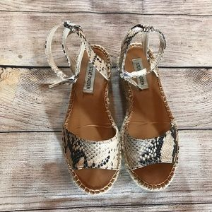 Gently worn snake skin Steve Madden sandals